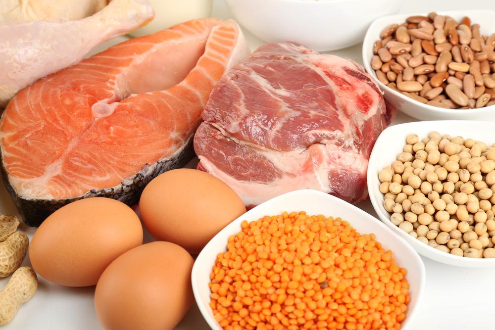 البروتين حل الشهية المفتوحة