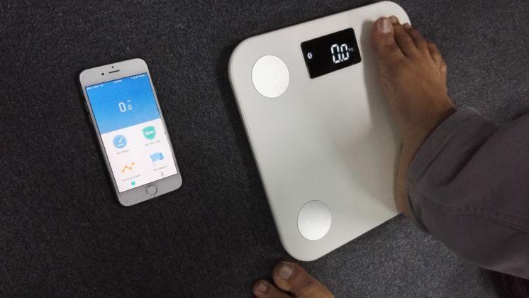 نسبة الدهون المثالية في الجسم